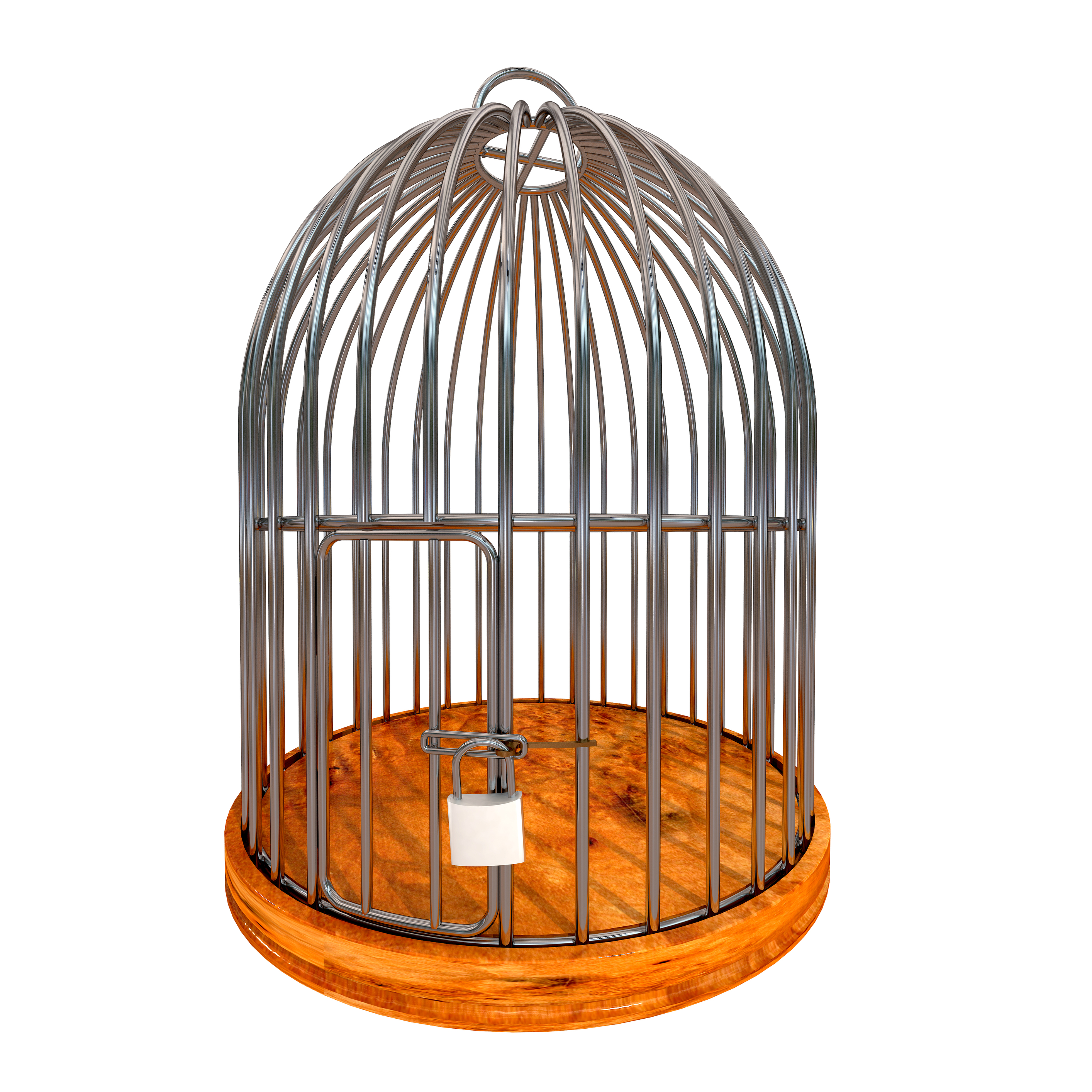 Stainless Steel Bird Cage Singapore